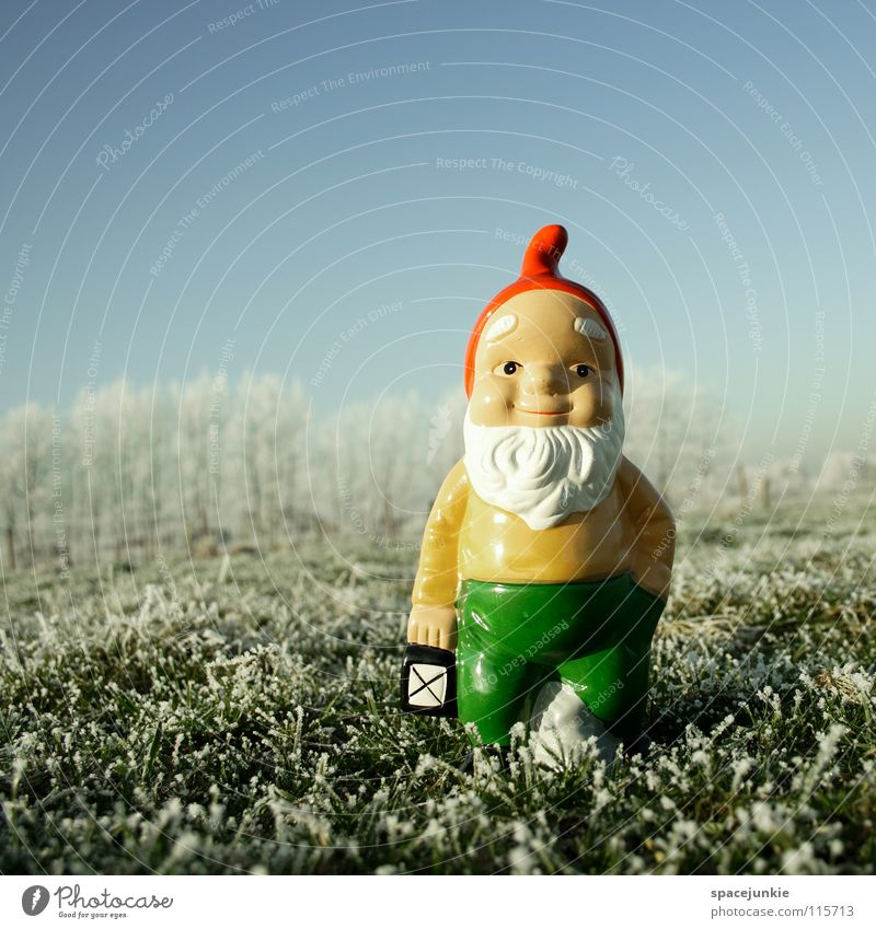 Looking for christmas (3) Meadow Grass Frozen Freeze White Hoar frost Exterior shot Winter December Cold Dwarf Garden gnome Whimsical Petit bourgeois Village