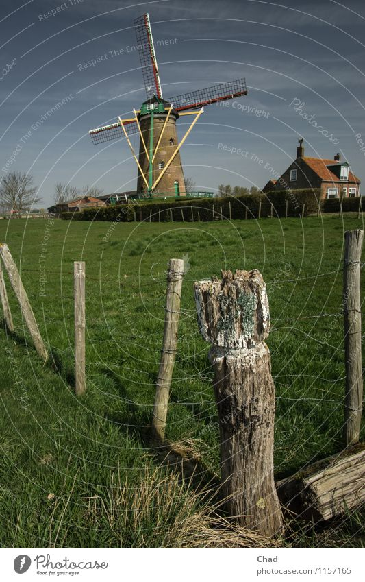 Durable | Holland Cliché Vacation & Travel Tourism Wind energy plant Windmill Nature Spring Grass Meadow House (Residential Structure) Building Fence post