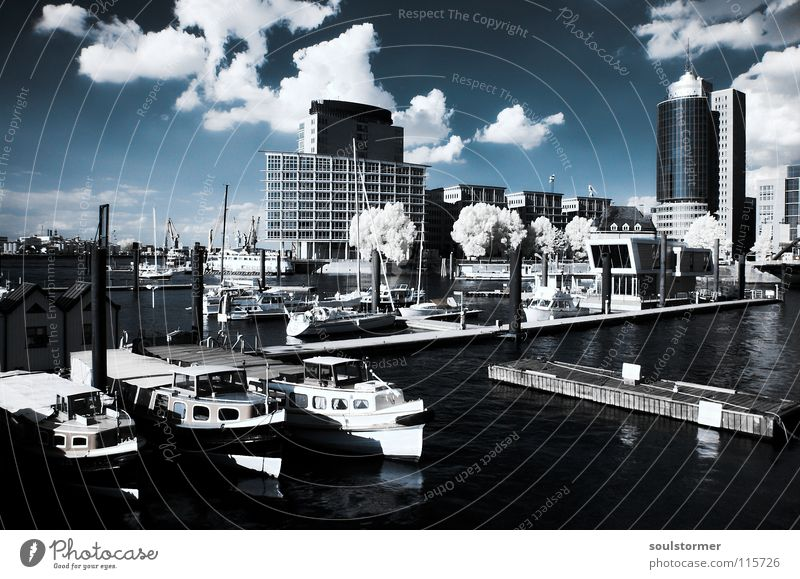 Port in IR Passenger train Infrared Infrared color Tree Wood flour Watercraft House (Residential Structure) Harbor city Town Port City Launch Ocean Clouds Black