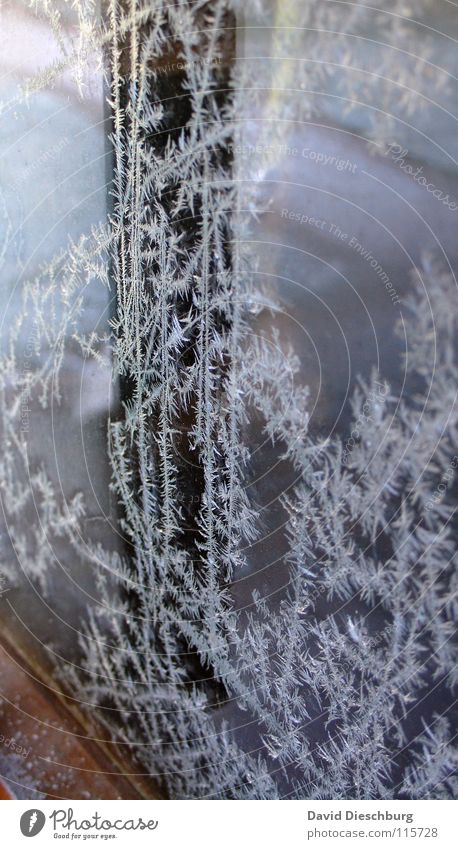 Winter Cold Window Wood Ice Line Glass Door Frost Frozen Freeze Slice Frame Climate change Frostwork Pane