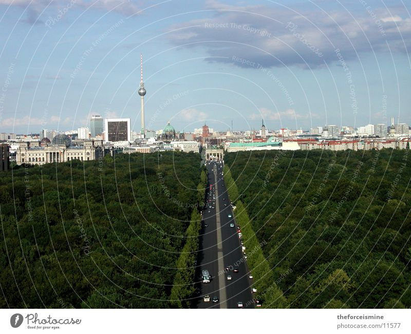 View of the city silhouette Berlin zoo Straße des 17. Juni Transport Town High-rise Brandenburg Gate Silhouette