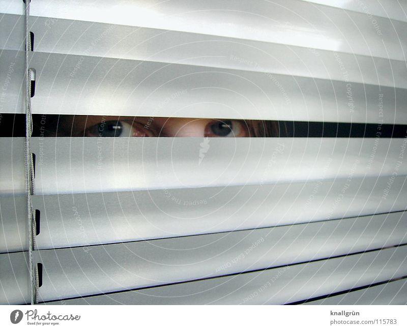 Eyes Bright Glittering Hide Silver Column Disk Venetian blinds