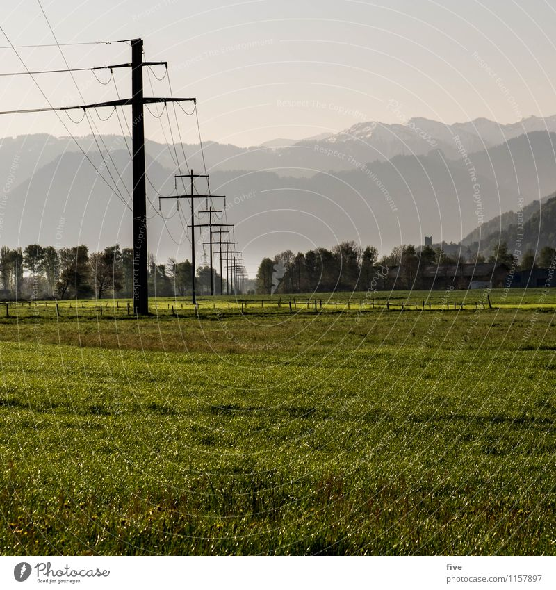 T Environment Nature Landscape Sky Summer Weather Tree Grass Meadow Field Hill Alps Mountain Infinity Warmth Electricity pylon Colour photo Exterior shot