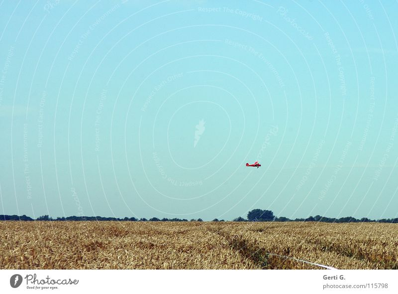 Sky Blue Playing Leisure and hobbies Horizon Flying Airplane Cornfield Blue sky Wheat Sky blue Aircraft Wheatfield Overflight Model aeroplane Bright background