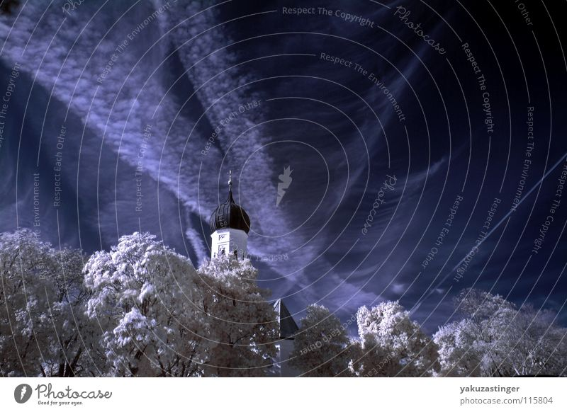 White Tree Blue Clouds Colour Snow Religion and faith Cirrus Vapor trail Infrared Infrared color