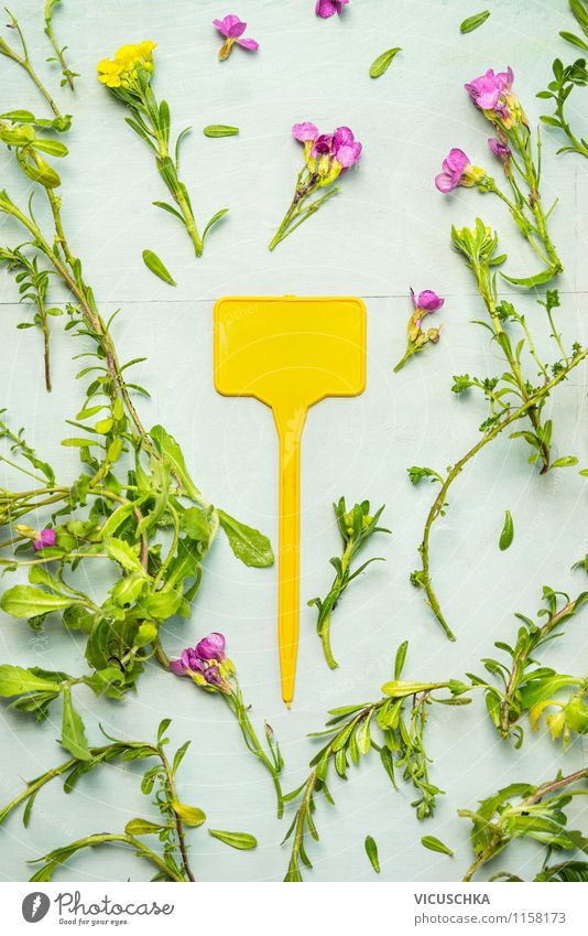 Nature Plant Summer Flower Joy Yellow Blossom Spring Autumn Style Background picture Garden Lifestyle Design Signs and labeling Flag