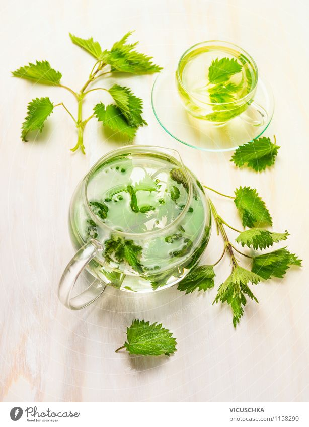 Herbal tea with stinging nettle Herbs and spices Beverage Tea Cup Mug Style Design Healthy Medical treatment Alternative medicine Healthy Eating Nature Plant