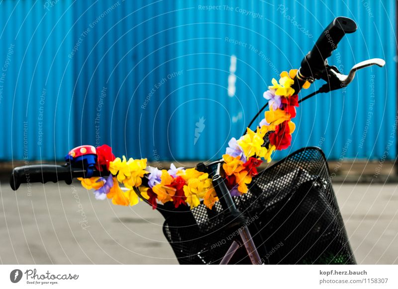 I'm going to the sea. Cycling Industrial plant Means of transport Bicycle Movement Driving Cool (slang) Hip & trendy Kitsch Trashy Happy Happiness Contentment