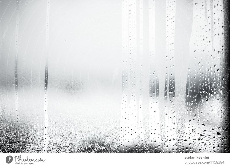 Rain at the window Vacation & Travel Winter Snow Water Drops of water Autumn Weather Bad weather Storm Snowfall Glass Freeze Sadness Cry Dark Wet Concern Grief