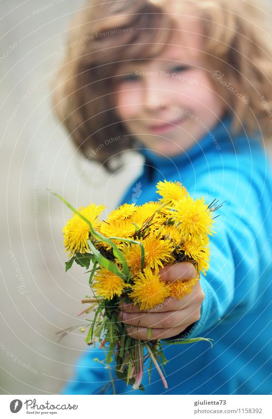 Flowers for you! Human being Androgynous Child Boy (child) Infancy 1 3 - 8 years Environment Plant Spring Summer Dandelion Bouquet Long-haired Curl Beautiful