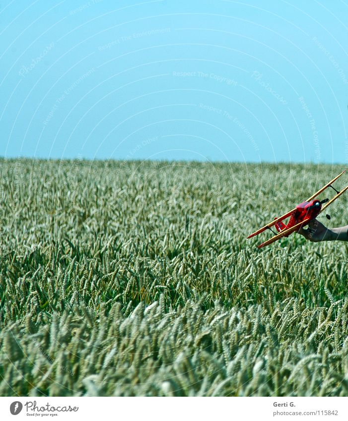 simulated*g Model aeroplane Wheatfield Horizon Blue sky Clear sky Cloudless sky Playing Summer Childhood memory