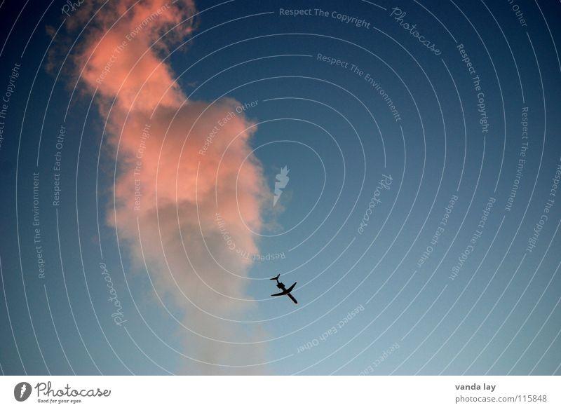 Sky Blue Vacation & Travel Pink Airplane Industry Aviation Smoke Airport Airplane landing Beautiful weather Dusk Terror Assault