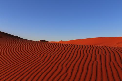 Red Waves Vacation & Travel Adventure Far-off places Safari Desert Earth Sand Cloudless sky Warmth Drought Namib desert Namibia Africa Deserted Discover