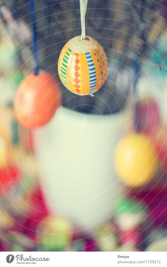 Easter eggs Yellow Orange Happiness Eggshell Multicoloured Bouquet Decoration Colour photo Interior shot Deserted Day Shallow depth of field spring