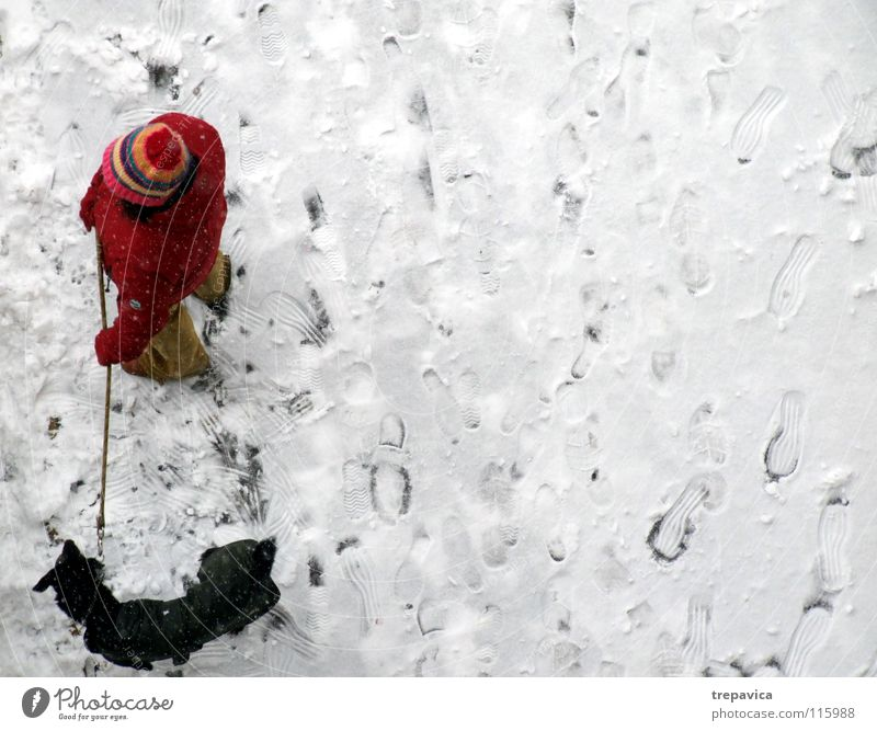 woman and dog Winter Dog White Cold Red Black December Animal Pet 2 Friendship To go for a walk Bound Chained up Together Relationship Loneliness Cap Snow