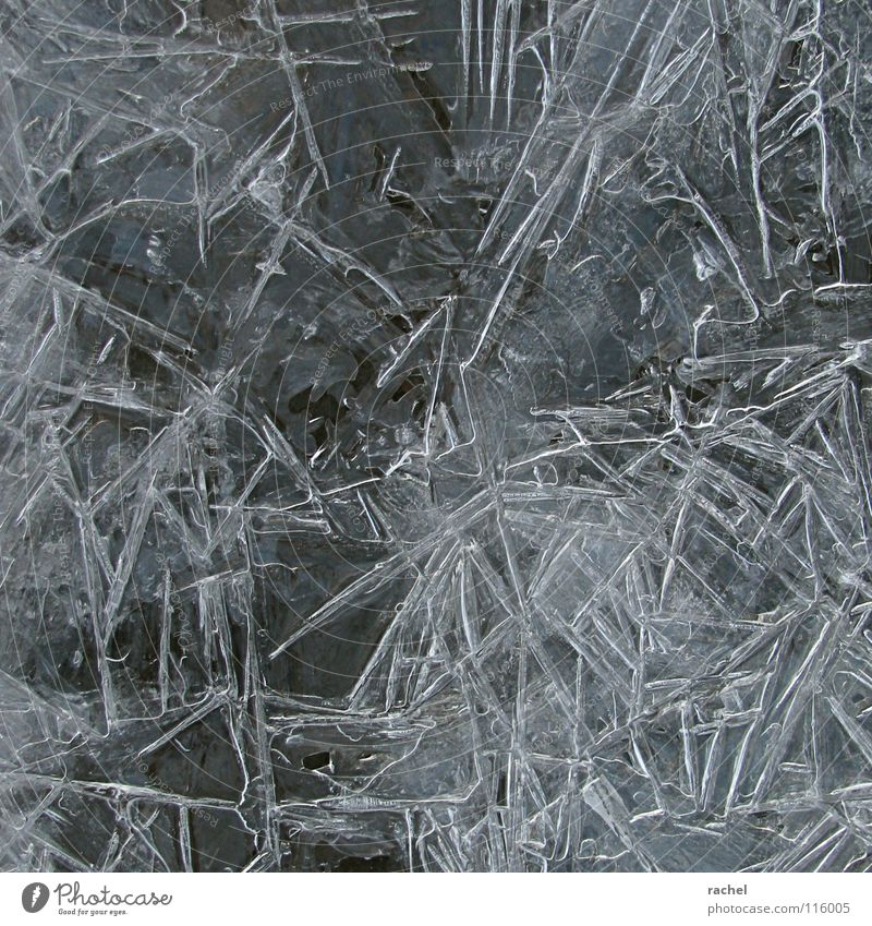 Frost Spell II Lake Brook Bog Freeze to death Solidify Ice Cold Deep frozen Frozen Aggregate state Minus degrees Thaw Melt Winter December Romance Glittering