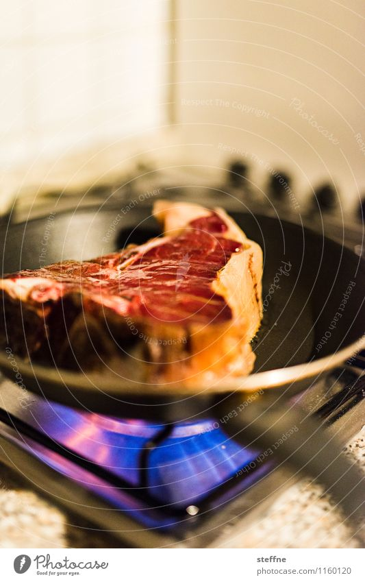 Image result for a picture of a cow meat on the stove