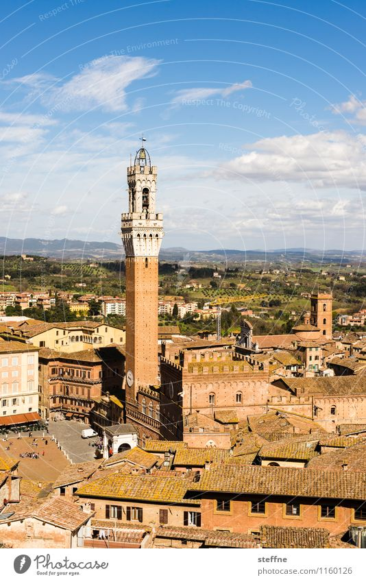 Siena Small Town Old town Vacation & Travel Tuscany Italy Torre del Mangia Beautiful weather Colour photo Exterior shot Copy Space top Bird's-eye view