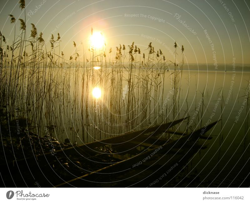 Verträumt™ Lake Footbridge Man Cold Winter Common Reed Relaxation Switch off Dream Forget Bavaria Stay Reflection Think Doomed Deferred Railroad tracks Sun Guy