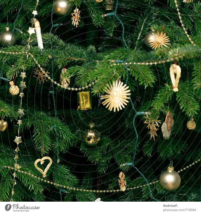 every year Christmas tree Christmas & Advent Christmas decoration Tree Coniferous trees Fir tree Fairy lights Green Winter Glitter Ball Embellish December