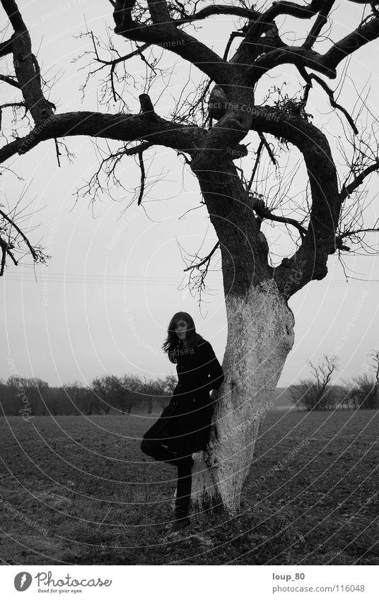 Human being Tree Winter Black Loneliness Gray Sadness Apple tree