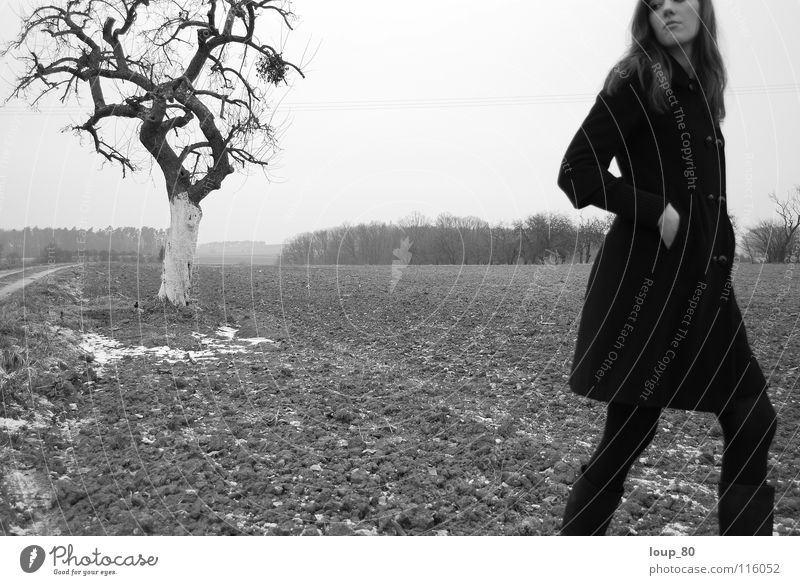 oT Woman Loneliness Black Tree Apple tree Field Coat Black & white photo Winter Landscape Nature mistletoe branch Sadness