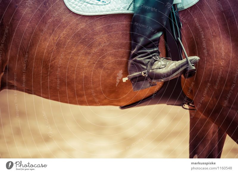cavalier Lifestyle Elegant Style Joy Happy Sports Equestrian sports riding tournament Show jumping behind Stapes Spore leather boots Saddle Human being