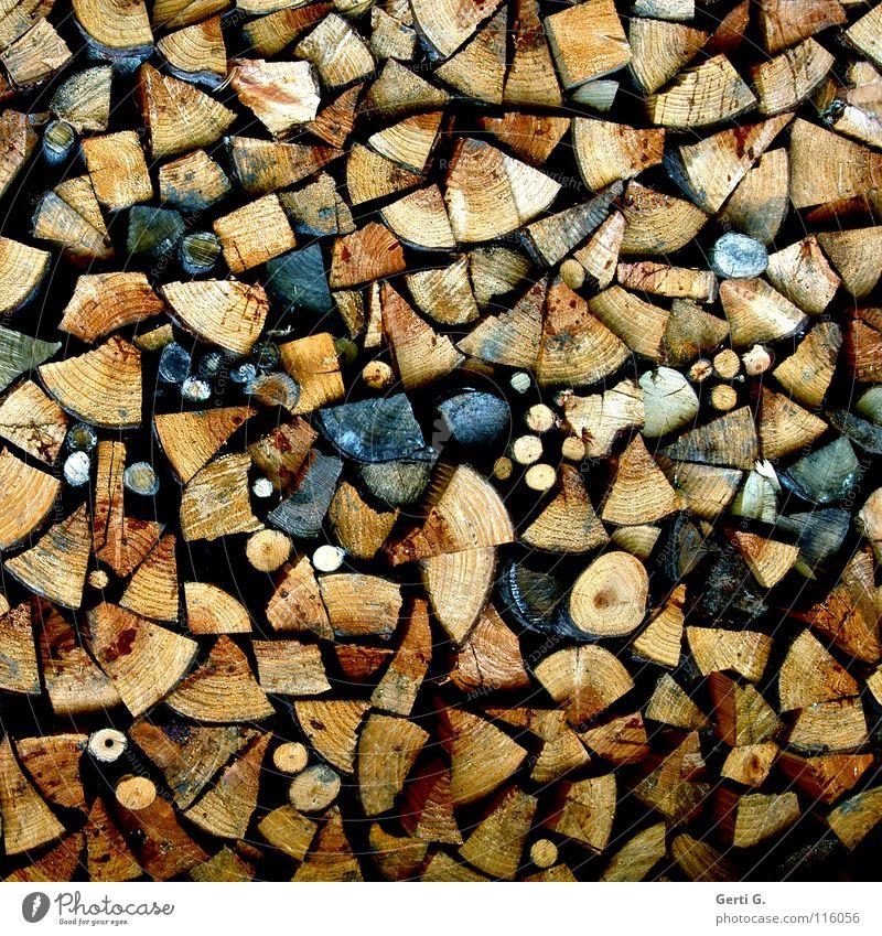 Wood Arrangement Branch Round Blaze Dry Material Craft (trade) Sharp-edged Burn Stack Fireplace Beech tree Oak tree Wood grain Firewood