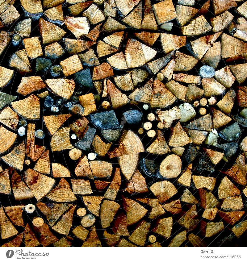 Yvonne his wood in front of the hut Wood Firewood Ignite Wood chopping Axe Round Sharp-edged Oak tree Beech tree Dry Cudgel Burn Stack of wood Arrangement