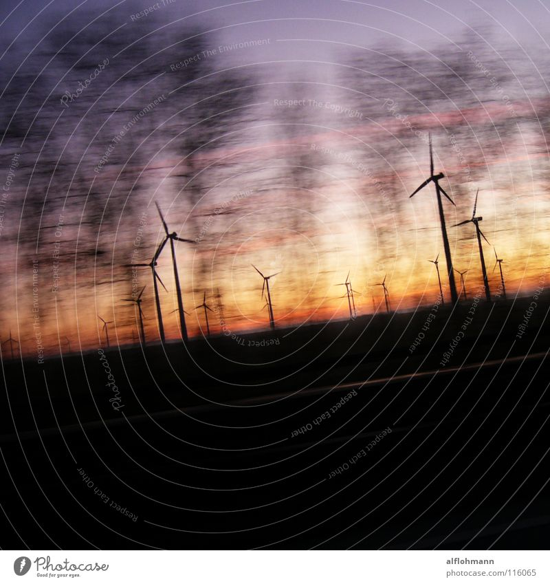 Wind'm up! Speed Tree Driving Converse Wind energy plant Dusk Sky Energy industry