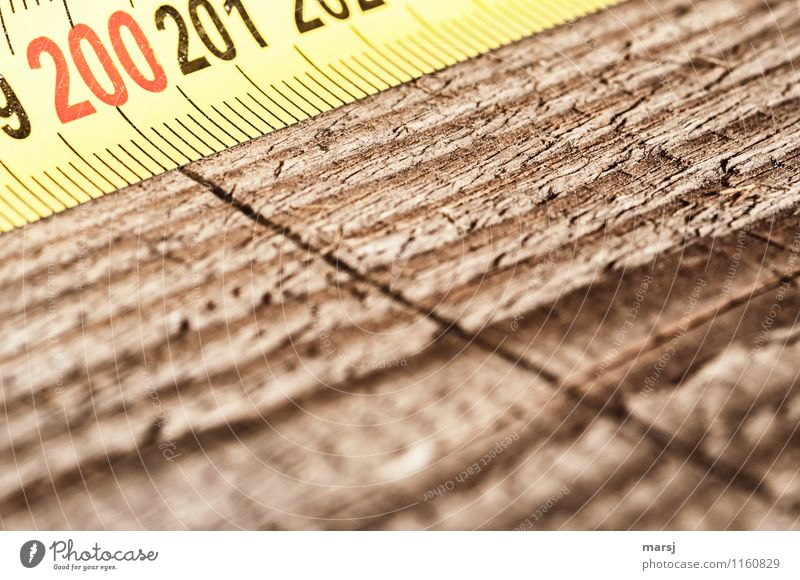 two hundred Work and employment Profession Craftsperson Joinery Workshop Workplace Construction site Craft (trade) Tape measure Wood Digits and numbers Line