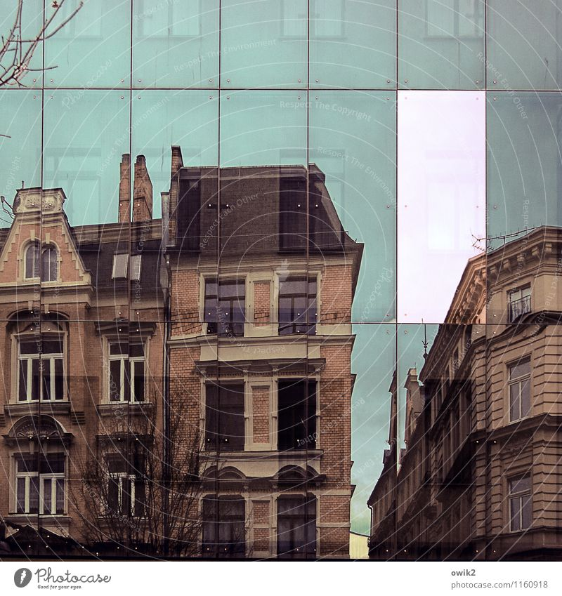 building scanner Sky Tree Twig Halle (Saale) Germany Town Downtown Populated House (Residential Structure) Wall (barrier) Wall (building) Facade Window Roof