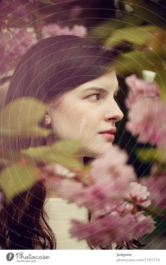 shy Beautiful Human being - a Royalty Free Stock Photo ...