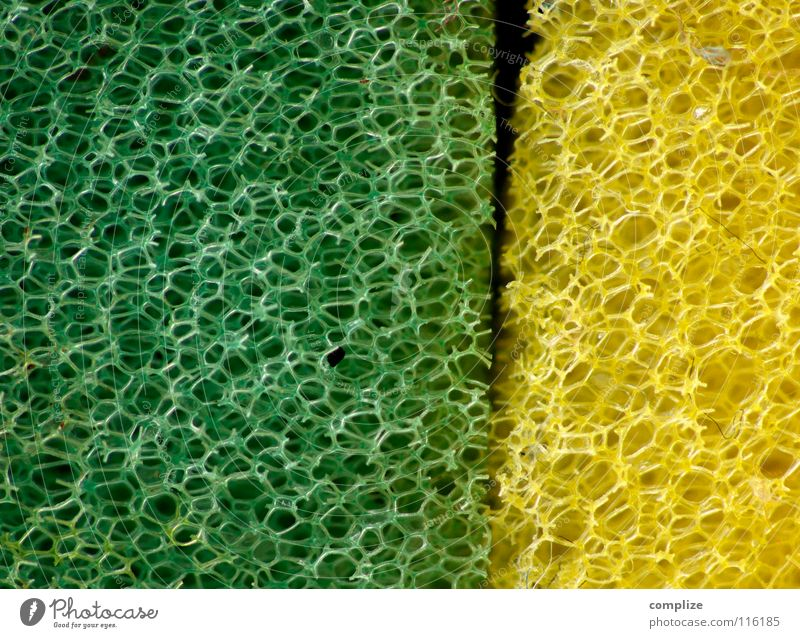 You old sponge you! Kitchen Cleaning Bathroom Yellow Green Cloth Macro (Extreme close-up) Do the dishes Interlaced Strange Obscure Exceptional Cleaning agent