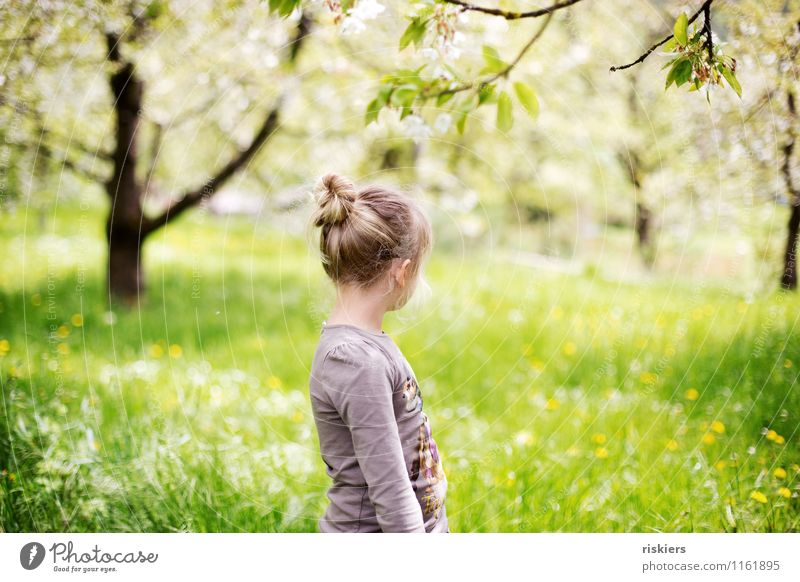 meadow child Human being Masculine Feminine Child Girl Infancy 1 3 - 8 years Environment Nature Landscape Sun Spring Beautiful weather Garden Meadow Observe
