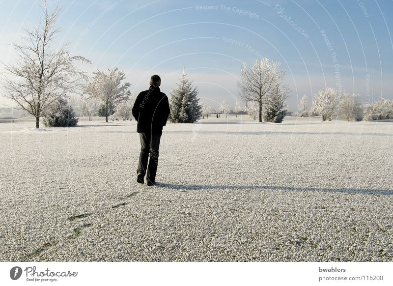 Man Beautiful Sky White Tree Winter Loneliness Cold Snow Landscape Ice Walking Tracks Hoar frost Ravensburg