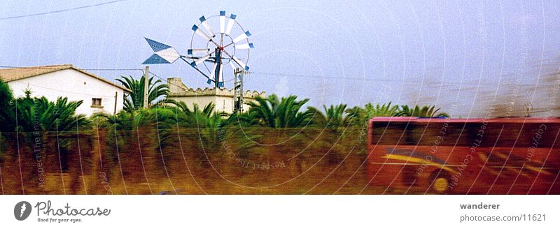 Bus Majorca Windmill
