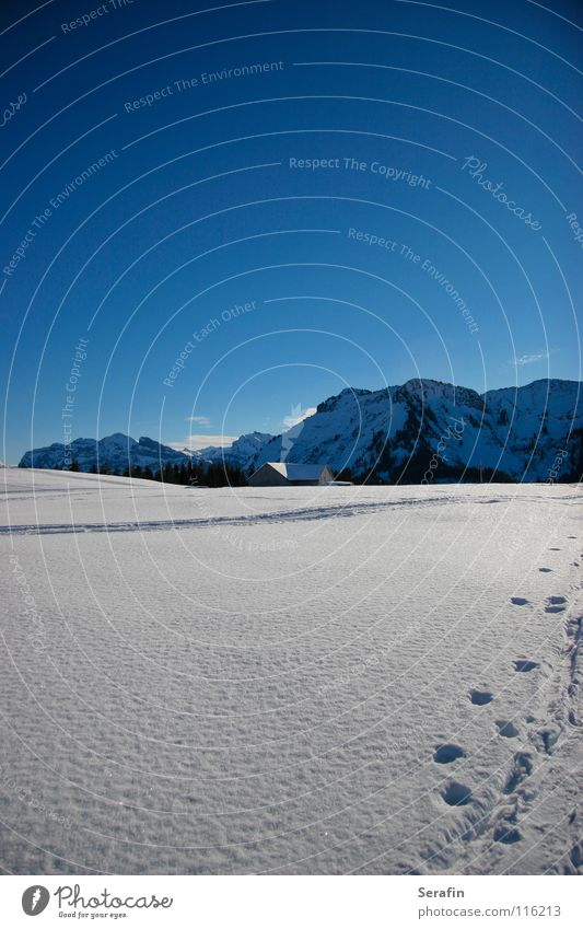 Winter Cold Snow Lanes & trails Ice Tracks Hut Winter sports Alpine pasture December Winter sun