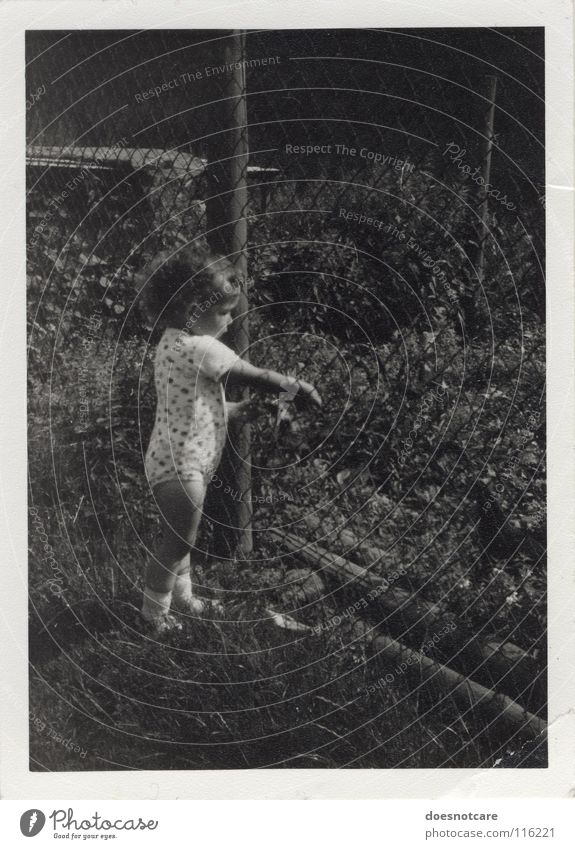 Fence child. Child Toddler Black White Gray Curl Past Memory Nature Black & white photo The eighties GDR