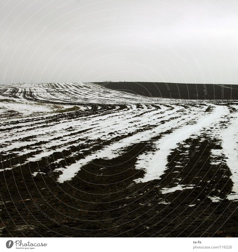 November 3 Gray Gloomy Autumn Field Cold Loneliness Snow Calm Contrast Structures and shapes