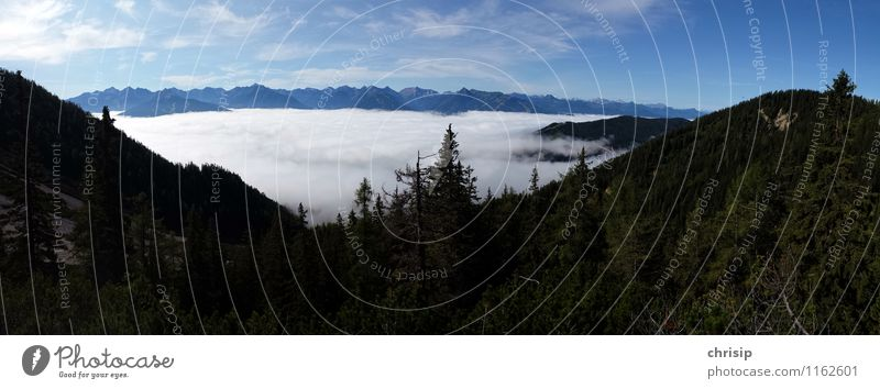 Fog in the valley Environment Nature Landscape Sky Clouds Horizon Plant Tree Hill Alps Mountain Peak Emotions Joy Happy Adventure Discover Relaxation Experience