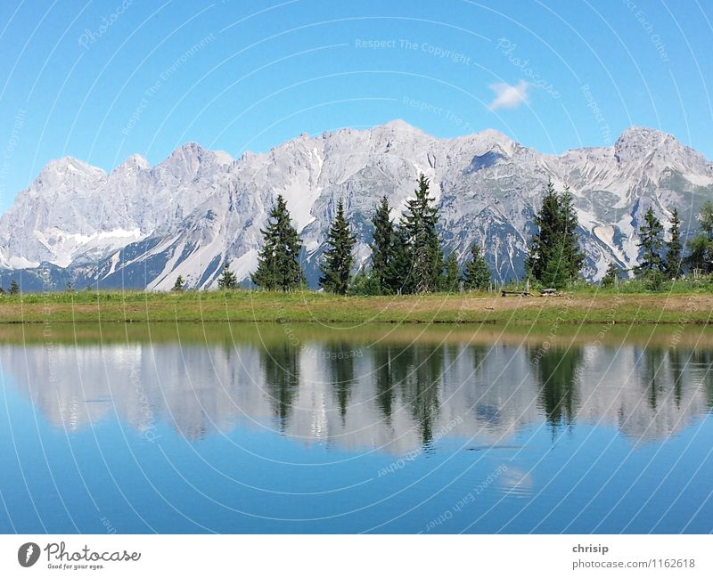 Dachstein I Environment Nature Landscape Water Sky Clouds Sunlight Climate Weather Beautiful weather Tree Grass Rock Alps Mountain Peak Lakeside Pond Blue Green