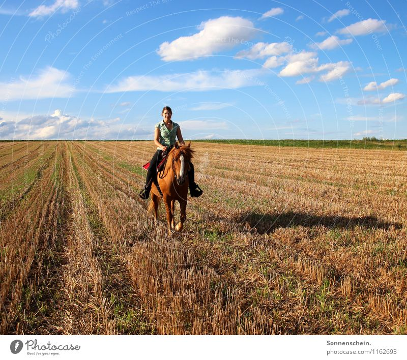 summer ride Lifestyle Joy Happy Harmonious Well-being Contentment Leisure and hobbies Ride Vacation & Travel Equestrian sports Feminine Young woman