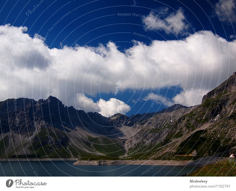 cloud tracks Environment Nature Landscape Plant Water Sky Clouds Sun Summer Beautiful weather Warmth Grass Bushes Foliage plant Wild plant Alps Mountain Peak