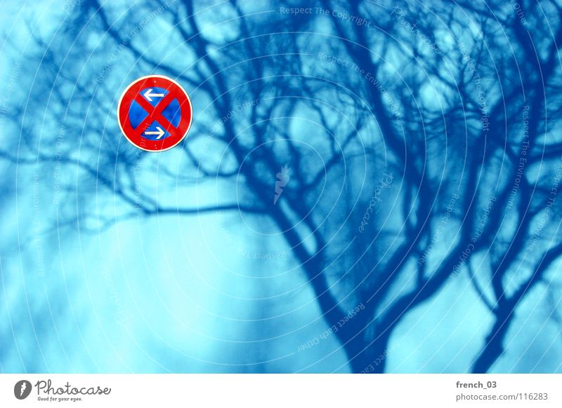 Beautiful White Tree Sun Blue Red Winter Colour Wall (building) Wall (barrier) Germany Signs and labeling Transport Arrangement Round Stop