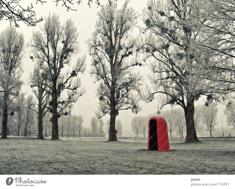 Tree Green Winter Cold Snow Meadow Grass Park Landscape Ice Orange Large Frost Lawn Bathroom Round