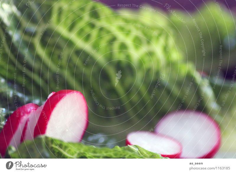 Vitamins! Food Vegetable Lettuce Salad Radish Nutrition Eating Buffet Brunch Organic produce Vegetarian diet Diet Fasting Lifestyle Healthy Healthy Eating