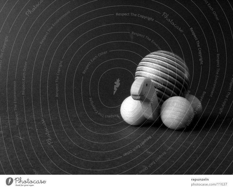 turtle Turtle Wood Pattern Round Craft (trade) Black & white photo Sphere