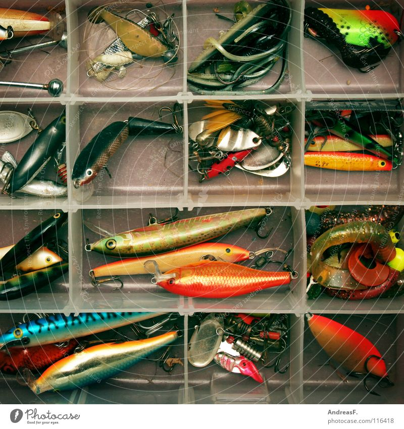 Nature Leisure and hobbies Fish Plastic Catch Fishing (Angle) Deception Angler Figure of speech Checkmark Spoon bait Perches Pike Spinner Imitate Predatory fish