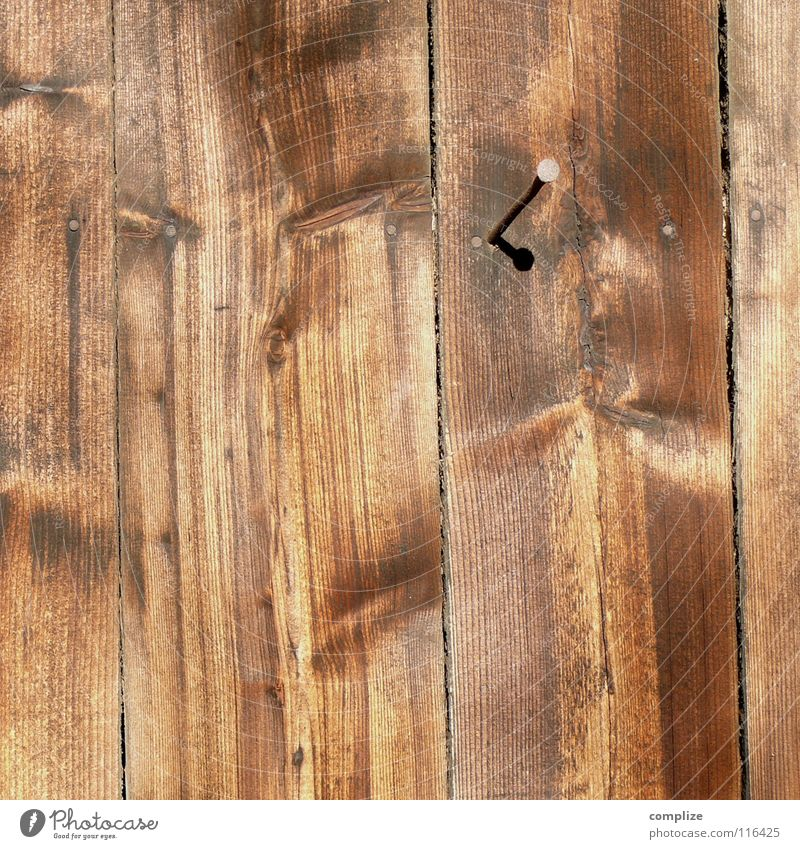 Nature Old Tree Wall (building) Wood Brown Farm Craft (trade) Fence Wooden board Barn Nail Craftsperson Column Hammer Wood grain